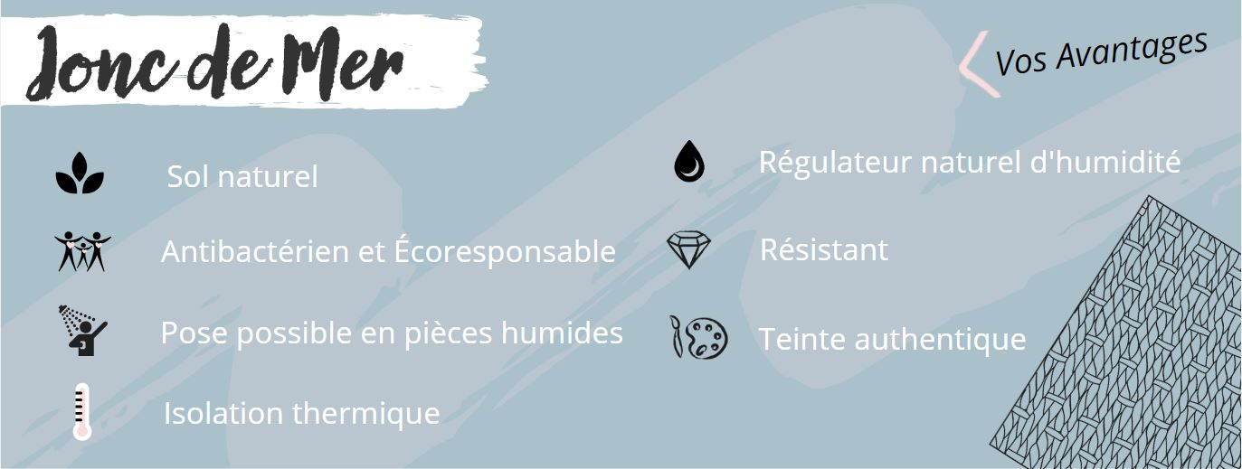 Infographie - Jonc de mer