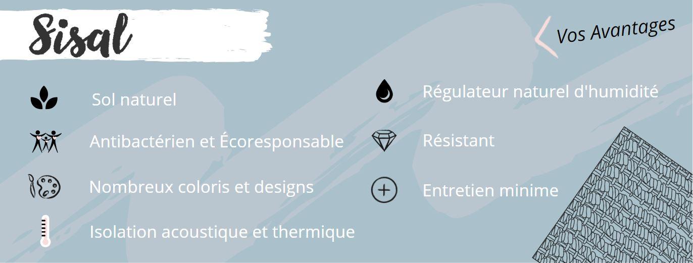 Infographie - Sisal